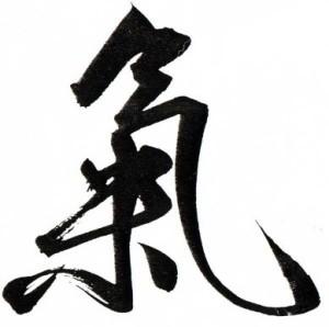 Qi karakter